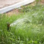 Орошение газона с помощью системы полива