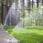 Орошение приусадебной зелени с помощью системы полива