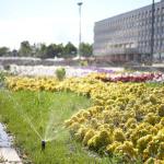 Система автоматического полива на Площади 100-летия В.И. Ленина (между Ленинским Мемориалом и УлГПУ)