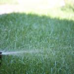 Орошение газона с помощью системы автоматического полива